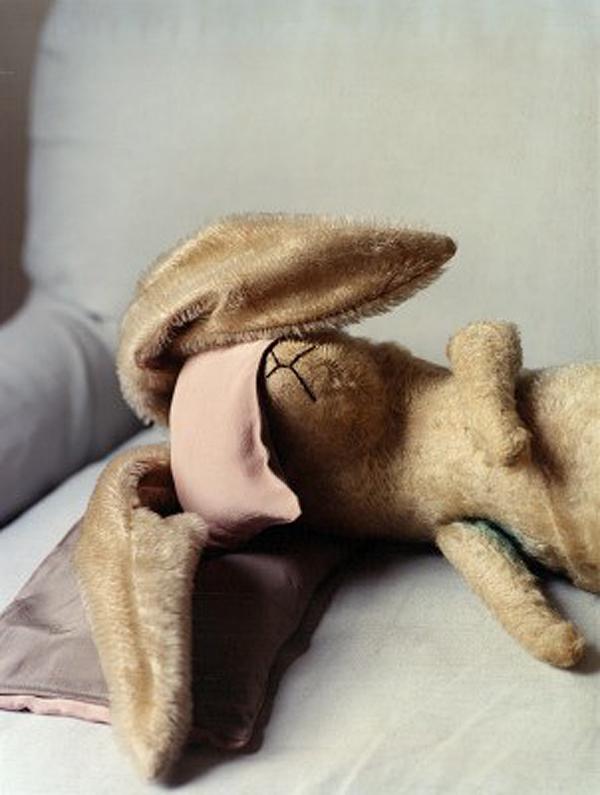 Hung over bunny