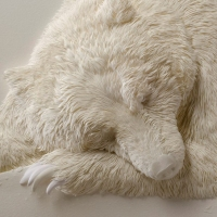 Calvin Nicholls' paper animals