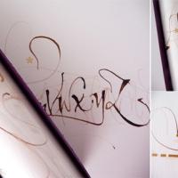 Silvia Cordero Vega's strokes