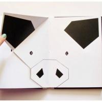 Marya Dzianová's Paper ZOO