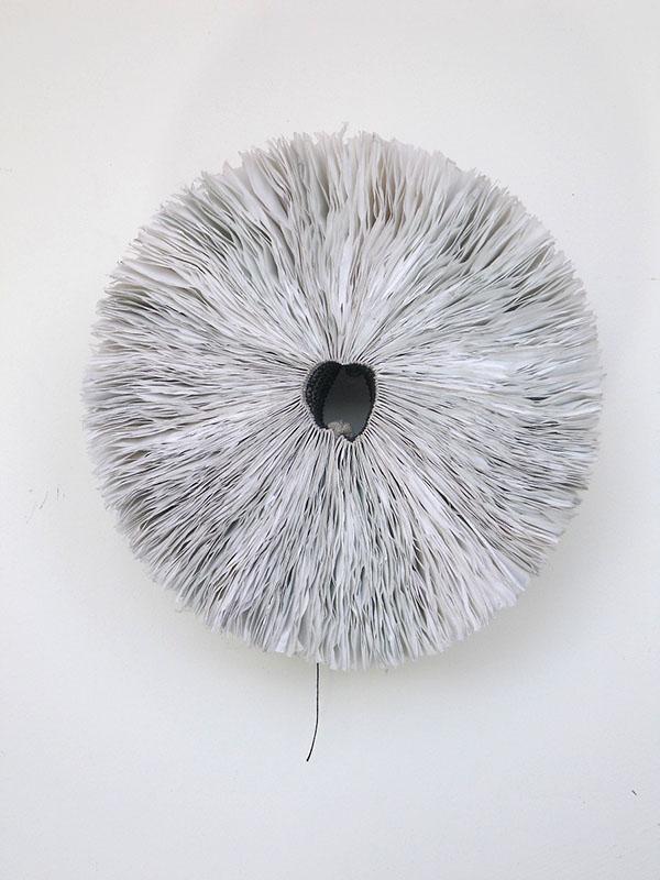 Benjamin Reynaert nest studies 1