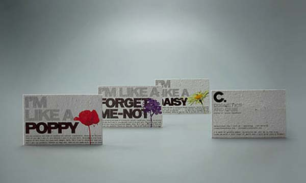 business cards by Rosa de Jong