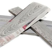 Mieke Meijer's NewspaperWood