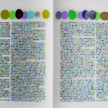 Lauren Di Cioccio color codification dot drawings